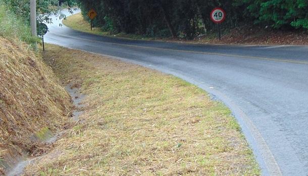 Mato roçado à margem da estrada do corredor turístico do Rio do Peixe.