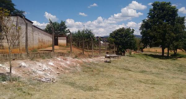 Canil Municipal recebe ajustes estruturais e organizativos