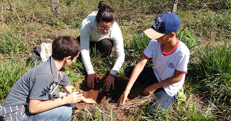 Margem do Córrego do Pinhal recebe plantio de 70 árvores