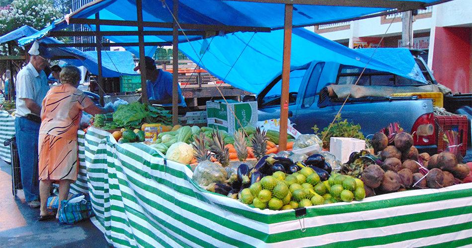 Feiras de produtos do campo são sucesso em Socorro; confira os dias e horários