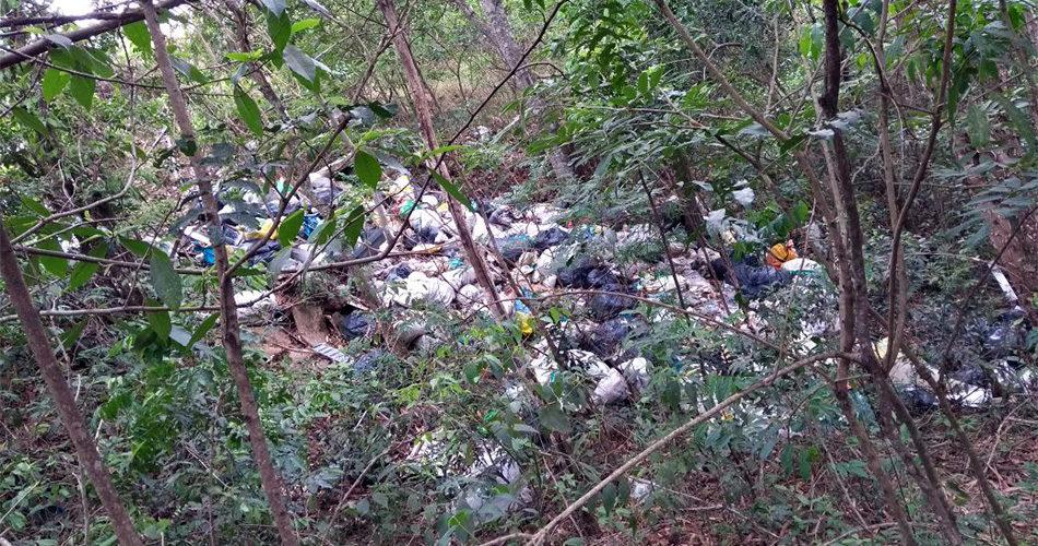 Descarte ilegal de lixo na Aparecidinha prejudica meio ambiente e dificulta trabalho de funcionários da coleta
