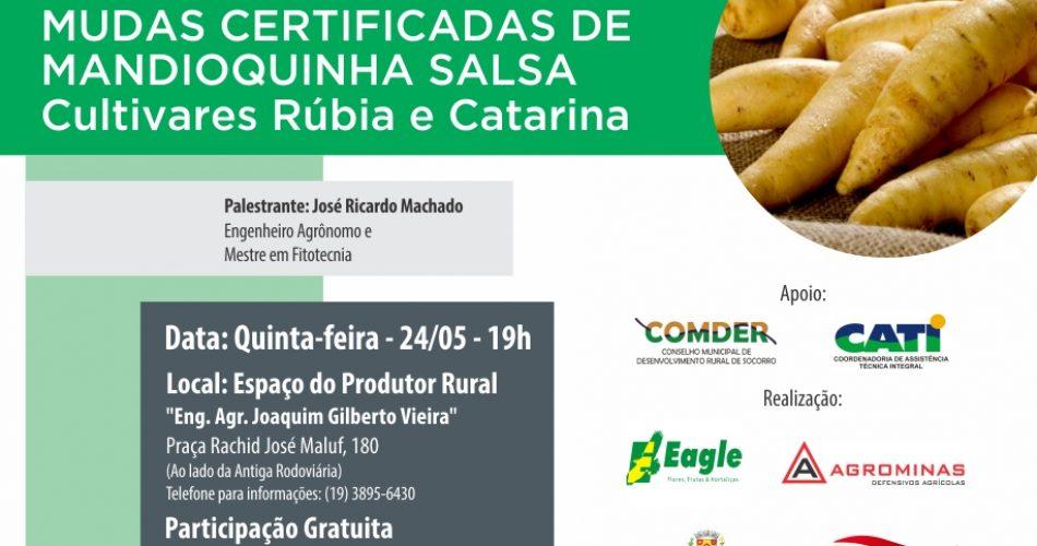 Espaço do Produtor Rural sedia palestra sobre cultivo de mandioquinha