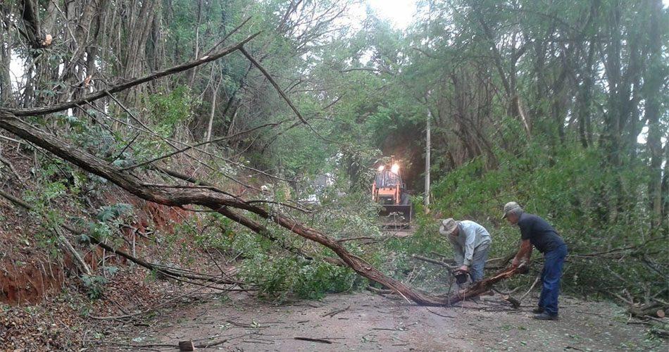 Prefeitura desobstrui estrada municipal após tempestade derrubar árvores