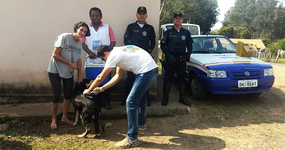 Campanha antirrábica já vacinou 1.200 cães e gatos e continua até 4 de outubro