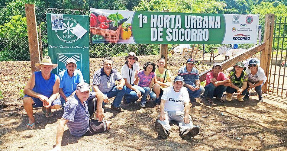 Prefeitura cria primeira Horta Urbana de Socorro no Jardim Teixeira