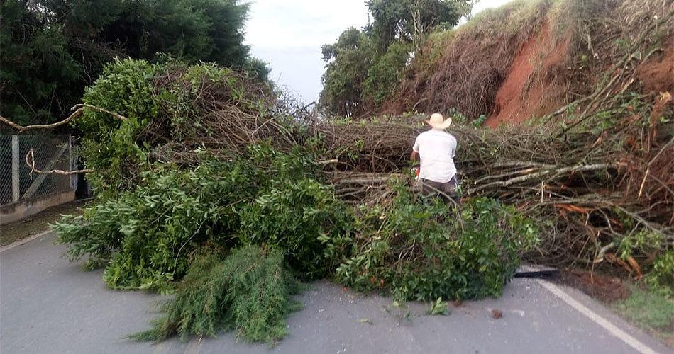 Prefeitura e Defesa Civil atendem a chamados relacionados às chuvas fortes no final do ano
